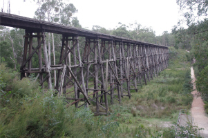 036 - Stony Creek Tressle Bridge 1906.jpg (377006 bytes)